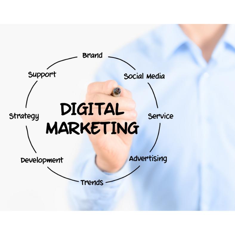 advertising digital marketing campaign in miami | social media campaigns miami | digital marketing in miami | google facebook IG campaigns agency miami | digital marketing email company mass text messages miami